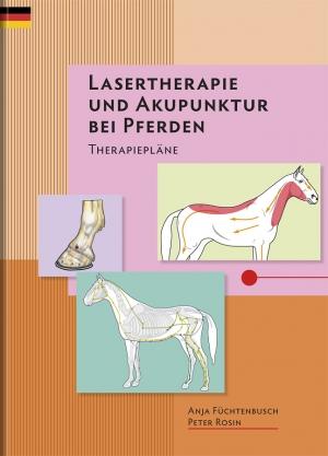 Lasertherapie und Akupunktur bei Pferden – Therapiepläne